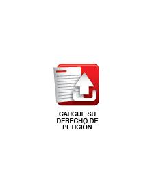 VT-CARGUE-DERECHO-PETICION
