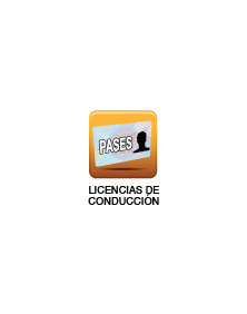 VT-LICENCIA-CONDUCCION