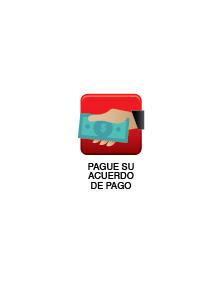VT-PAGUES-SU-ACUERDO-DE-PAGO